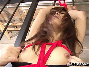 roped asian female got her cootchie toyed by naughty deviants